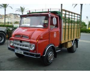 Camion Ebro